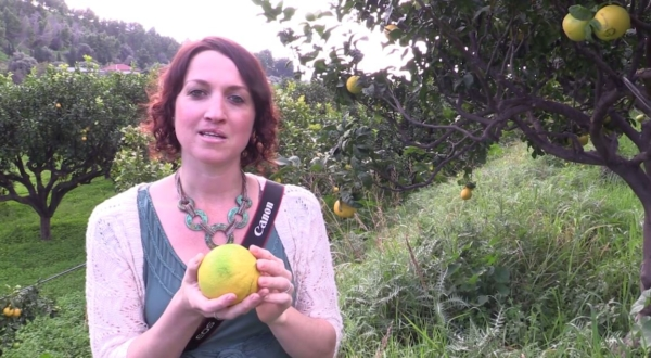 Supply Chain Ingredient Sourcing Video Badger Bergamot