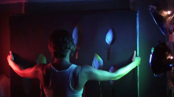 Video for Artists Katie Schwerin Light Shadow Puppetry